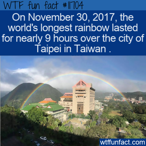 WTF Fun Fact - Longest Rainbow