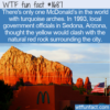 WTF Fun Fact – Not So Golden Arches