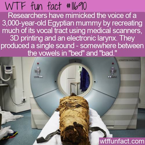 WTF Fun Fact - Reproduced A Mummy's Voice