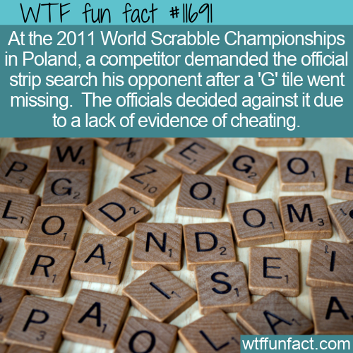 WTF Fun Fact - Scrabble Pro Demands Strip Search