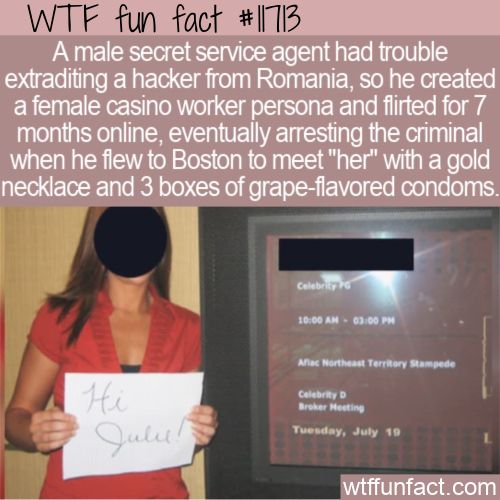 WTF Fun Fact - Secret Service Catfishes Romanian Hacker