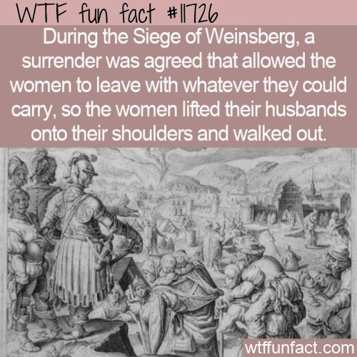 WTF Fun Fact - Siege of Weinsberg