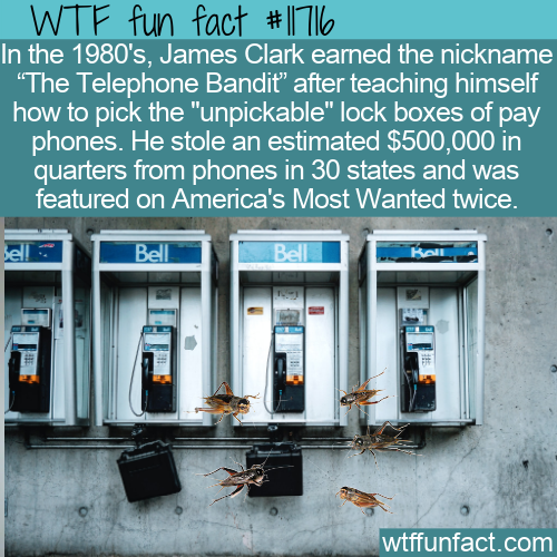 WTF Fun Fact - The Telephone Bandit