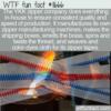 WTF Fun Fact – YKK Does Everything Itself