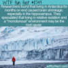 WTF Fun Fact – Antarctica Shrinks Your Brain