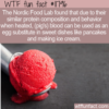 WTF Fun Fact – Blood As Egg Substitute