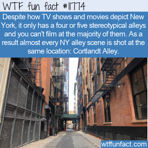 WTF Fun Fact - Cortland Alley In The Movies