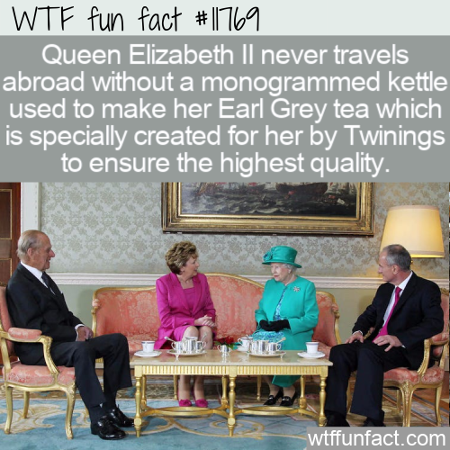 WTF Fun Fact - Don't Leave Home Without Your Kettle
