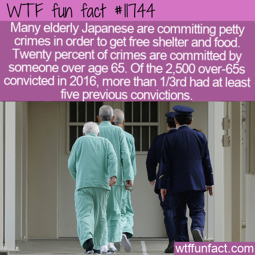 WTF Fun Fact - Elderly Crime In Japan
