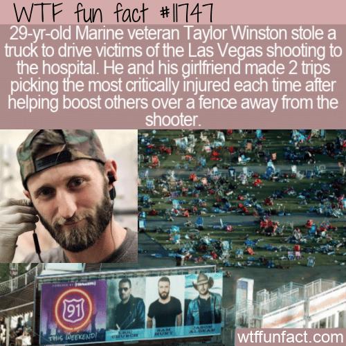 WTF Fun Fact - Hero Taylor Winston