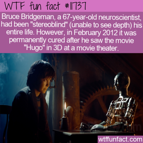 WTF Fun Fact - Hugo 3D Cured Stereoblindness