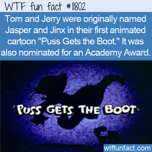 WTF Fun Fact - Jasper and Jinx