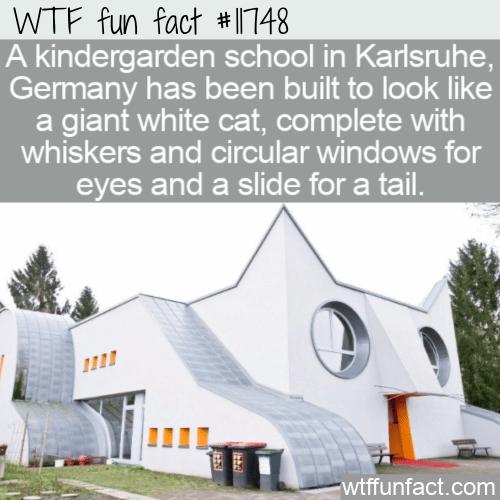WTF Fun Fact - Kindergarten Wolfartsweier