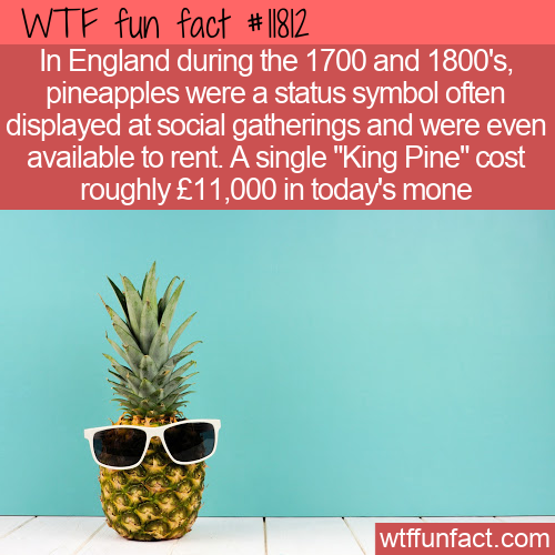 WTF Fun Fact - Pineapple As A Status Symbol