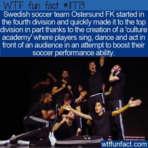 WTF Fun Fact - Sweden Soccer Teams Culture Academy