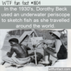 WTF Fun Fact – Underwater Periscope