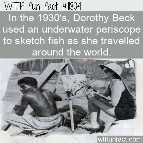 WTF Fun Fact - Underwater Periscope