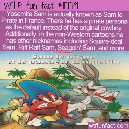 WTF Fun Fact - Yosemite Sam or Sam le Pirate