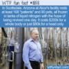 WTF Fun Fact – Cryonics
