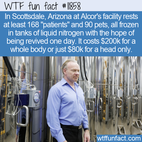WTF Fun Fact - Cryonics