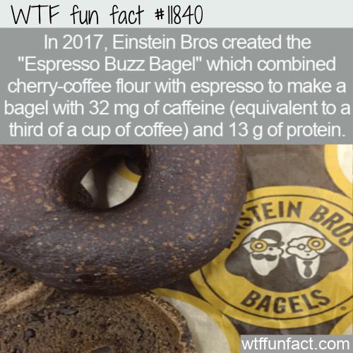 WTF Fun Fact - Espresso Buzz Bagel