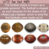 WTF Fun Fact – Football / Prolate Spheroid