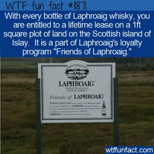 WTF Fun Fact - Friends of Laphroaig Land
