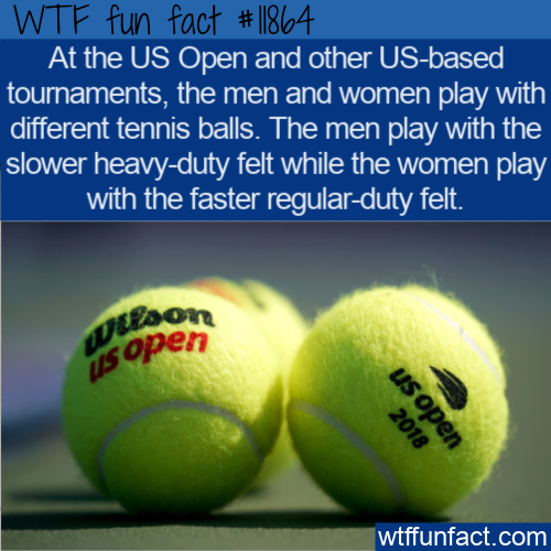 WTF Fun Fact - Heavy-Duty or Regular-Duty Tennis Balls