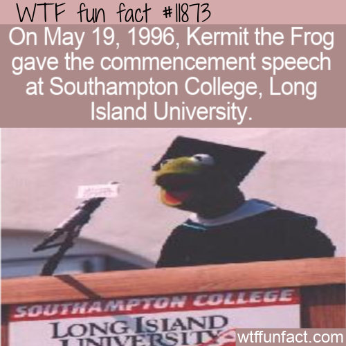 WTF Fun Fact - Kermit The Frog Commencement Speech