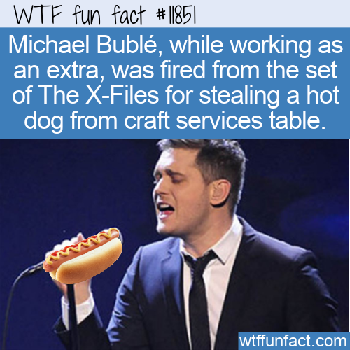 WTF Fun Fact - Michael Buble Fired From The X-Files