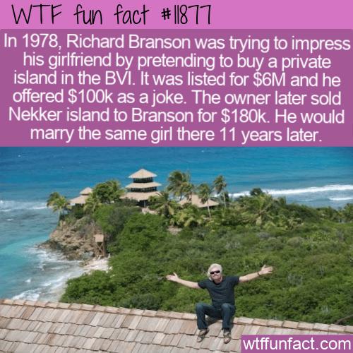 WTF Fun Fact - Nekker Island For Cheap