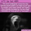 WTF Fun Fact – Poltergeist