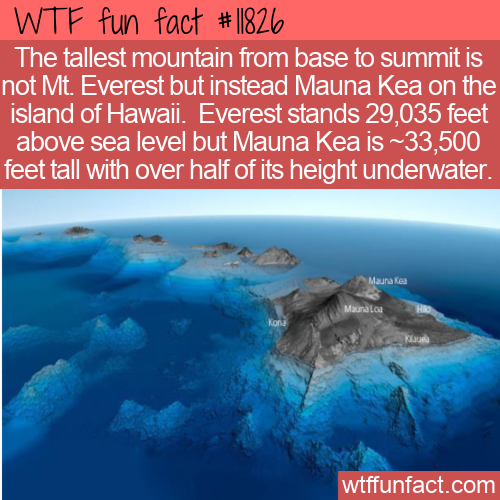 WTF Fun Fact - The Tallest Mountain Is Not Mount Everest
