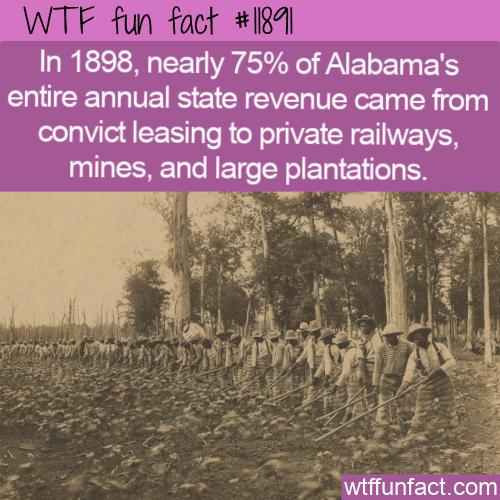 WTF Fun Fact - Convict Leasing