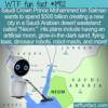 WTF Fun Fact – Neom