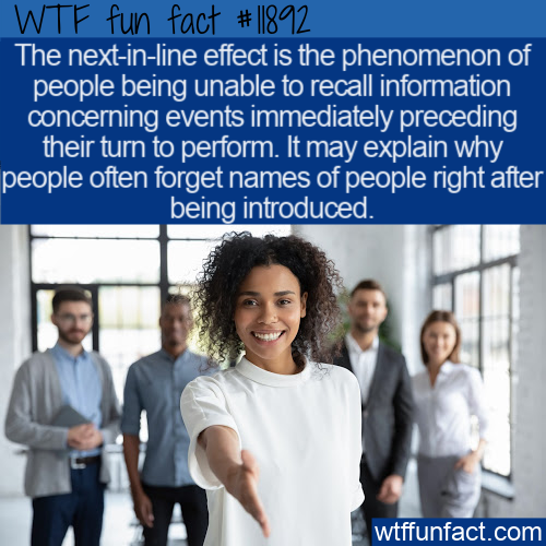WTF Fun Fact - Next-In-Line Effect