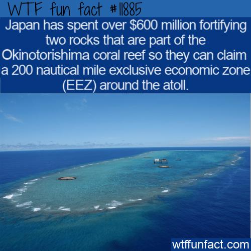 WTF Fun Fact - Okinotorishima Reef