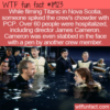 WTF Fun Fact – PCP In The Chowder