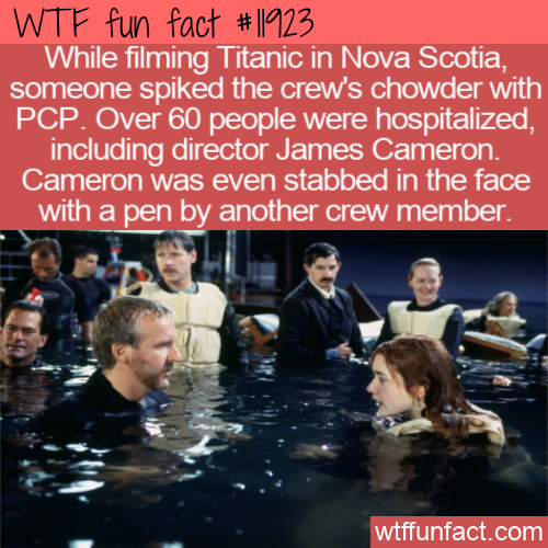 WTF Fun Fact - PCP In The Chowder