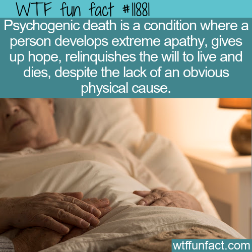 WTF Fun Fact - Psychogenic Death