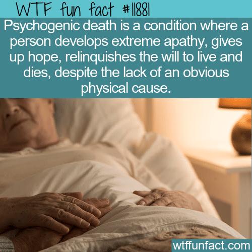 WTF Fun Fact - Psychogenic Death