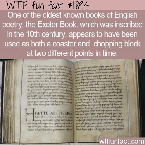 WTF Fun Fact - Rare Book Chopping Block & Coaster