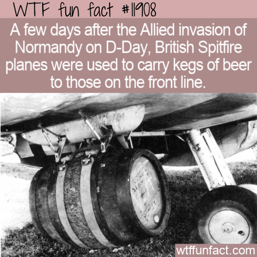 WTF Fun Fact - Spitfire Beer Keg Delivery