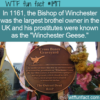 WTF Fun Fact – Winchester Geese