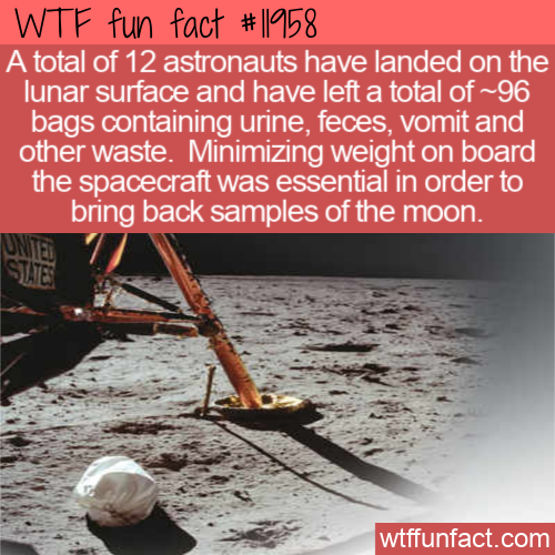 WTF Fun Fact - 96 Bags Of Trash On The Moon