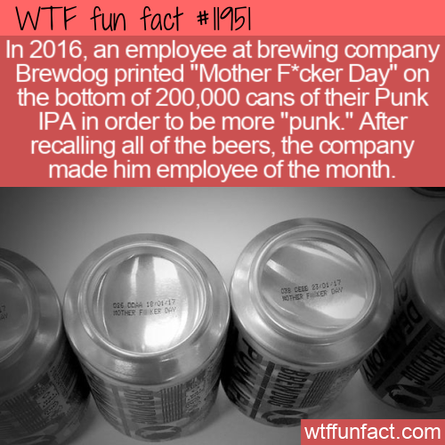 WTF Fun Fact - Brewdog's Punk Of The Month