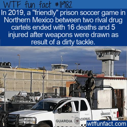 WTF Fun Fact - Cartels Friendly Soccer Match Turns Deadly