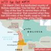 WTF Fun Fact –  Dia Del Mar