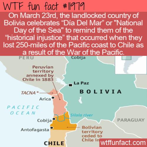 WTF Fun Fact - Dia Del Mar