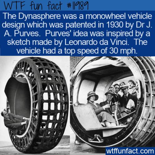WTF Fun Fact - Dynasphere